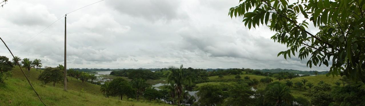 Laguna del Manatí, al lado del Cerro, fue paraíso de los Manatíes, pero dejan bajar el agua demasiado los campesinos para ganar tierra y el animal sagrado se fue...
