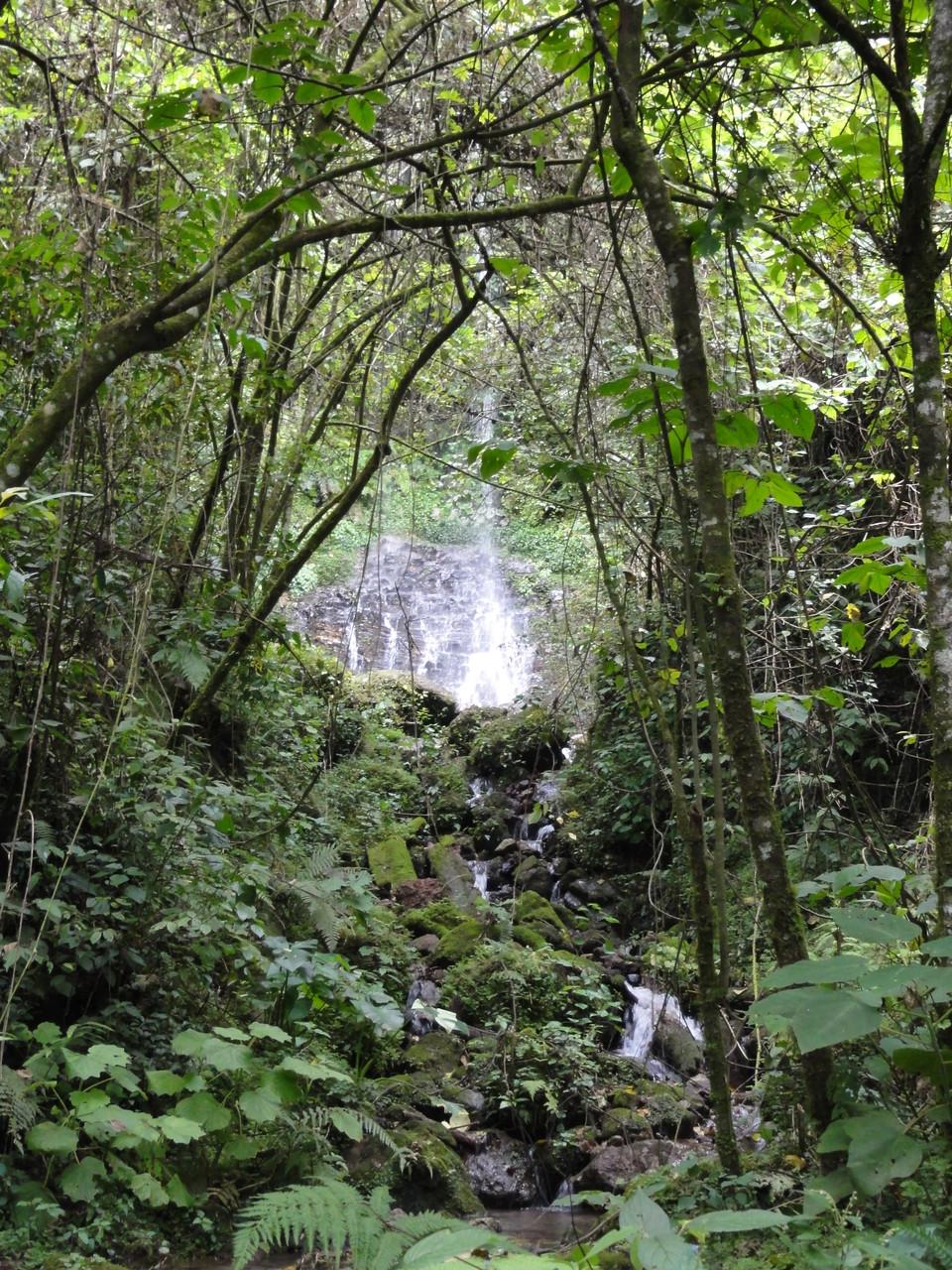 hay varias cascadas y manantiales...