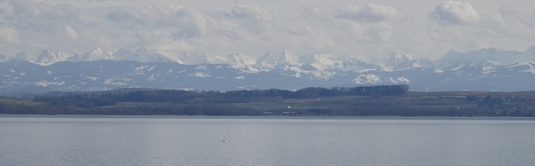 the Swiss Alps over the Lake of Neuenburg