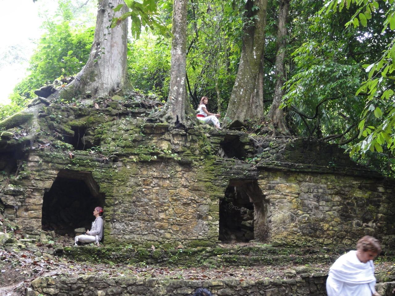 finally we reached our goal: Palenque / finalmente llegamos a la meta: Palenque