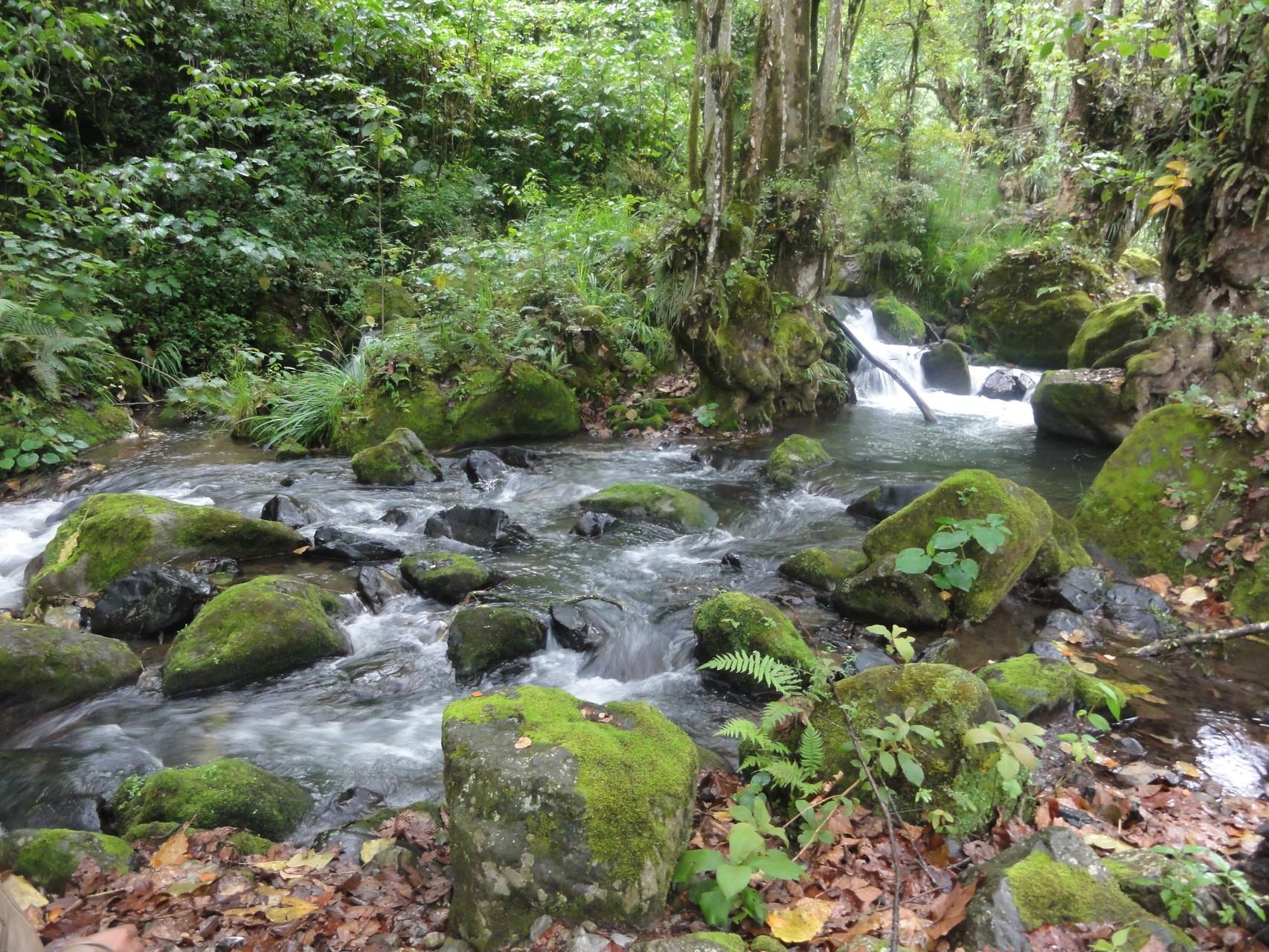 y el río de San Lorenzo con su belleza incomparable...