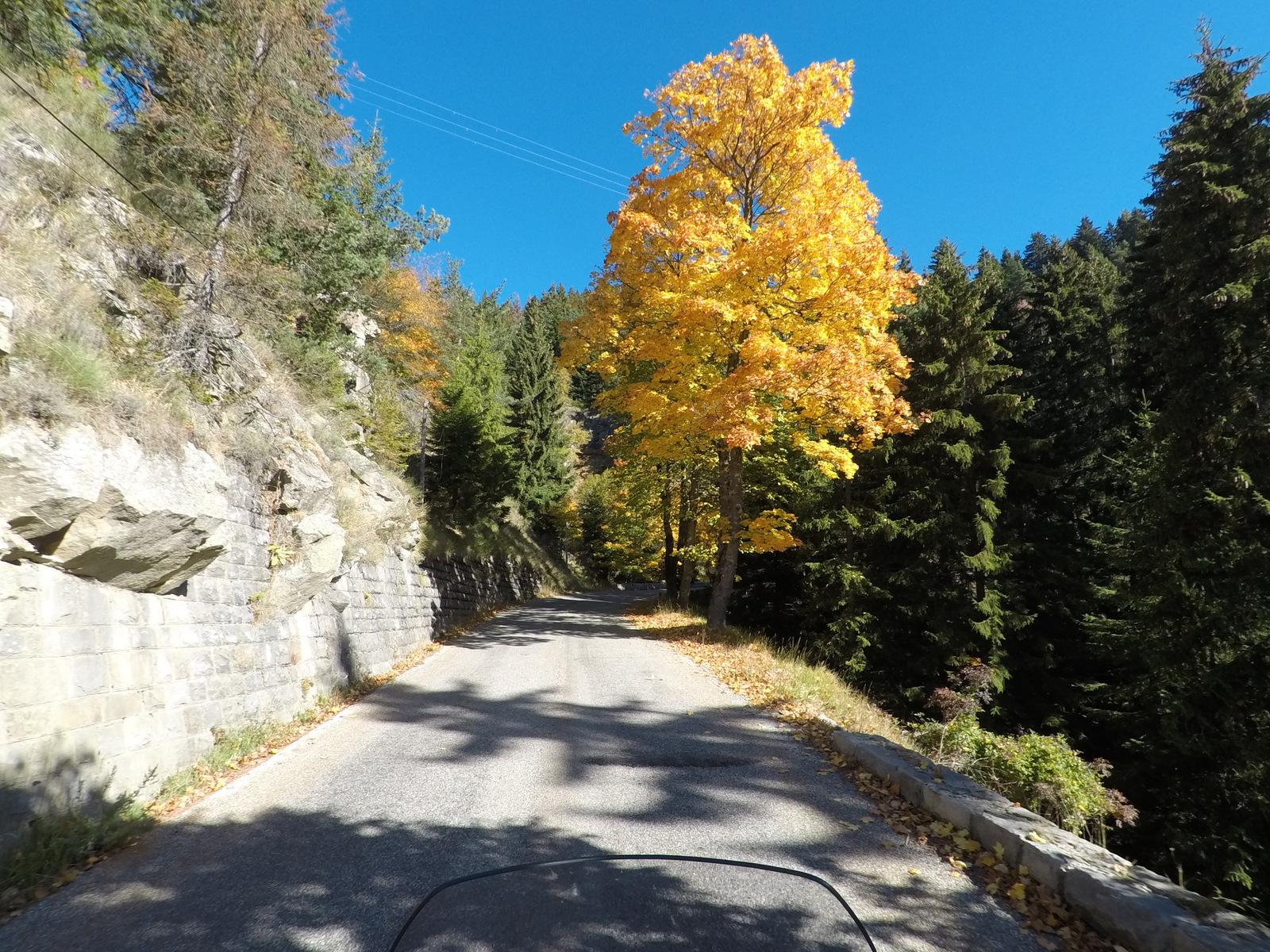 couleurs d'automne !