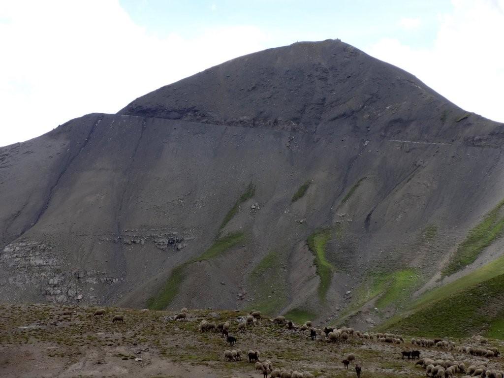 cime de la Bonette : 2860 m