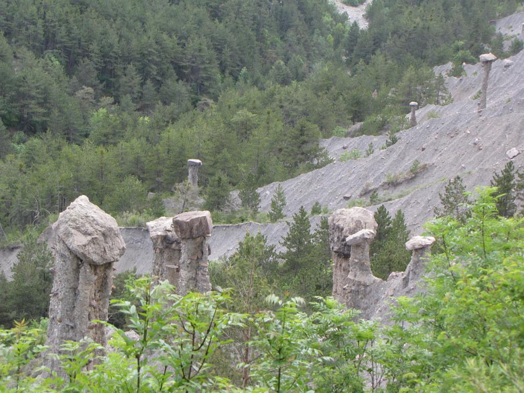 demoiselles de 30.000 ans ???