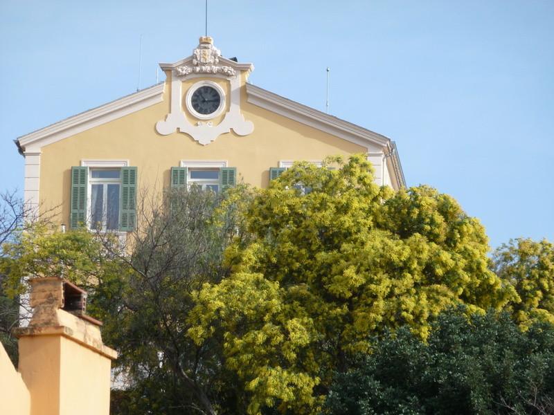 visite du village de Bormes ... les mimosas