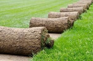Rollrasen verlegen Fertigrasen verlegen - Hannover, Burgwedel professionell, schnell, sach- und fachgerecht durch Green Fairway