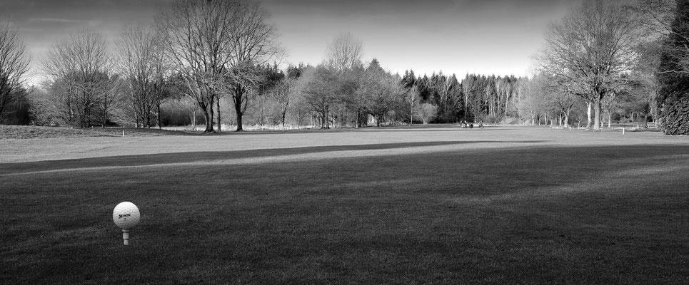 "Uwe Eckardt ""Golfplatz am Morgen"""