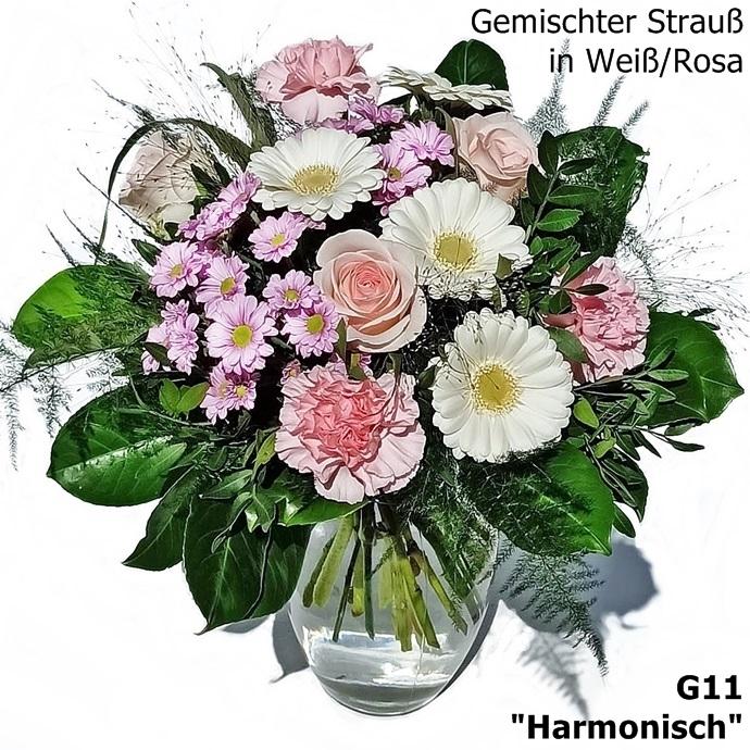 G11: Harmonisch
