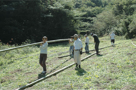 Carrying bamboo away from the cutting site, 2006