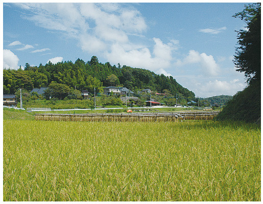 A view of Nishi-Shioko in late summer