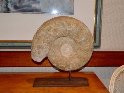 化石買取画像