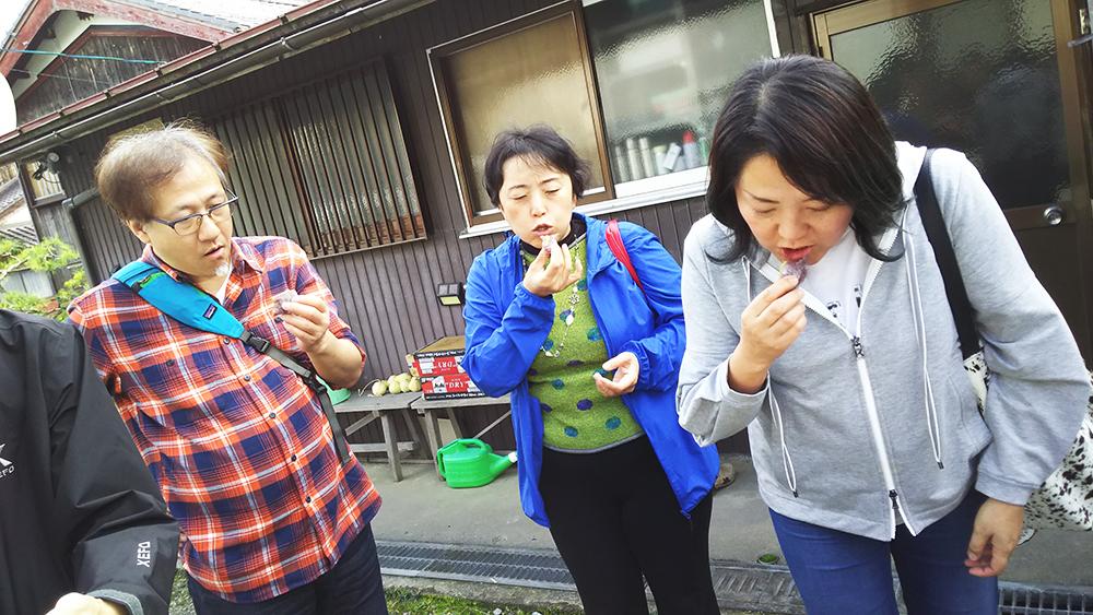 朽木まるきゅう(枝豆、大福)