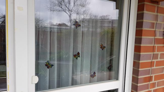 Das Fenster spiegelt einen Baum. Dank Fensterfarbe und Gardine ist das Hindernis zu erkennen.