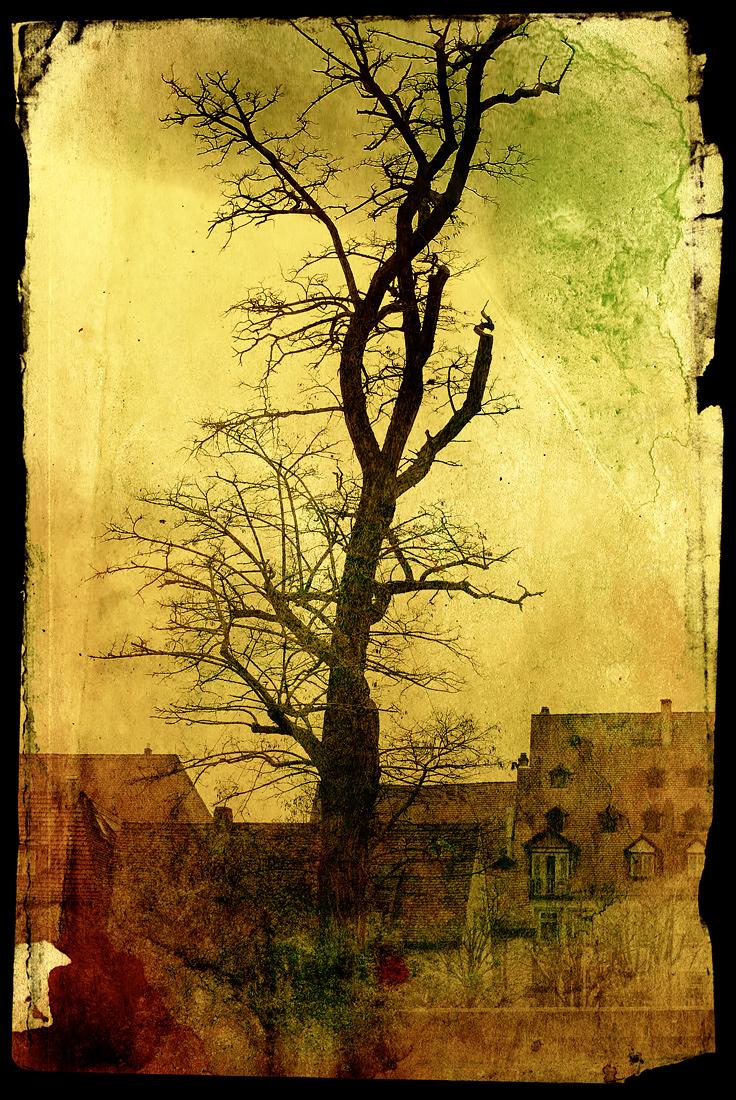 Bamberg / Art.: BA2007_2