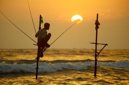 Traditioneller Fische, Südküste Sri Lankas