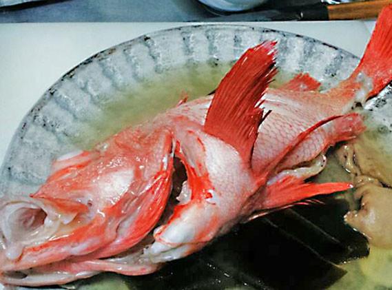 熟成キンキを丸ごと味わう、究極の漁師料理「キンキの湯煮」