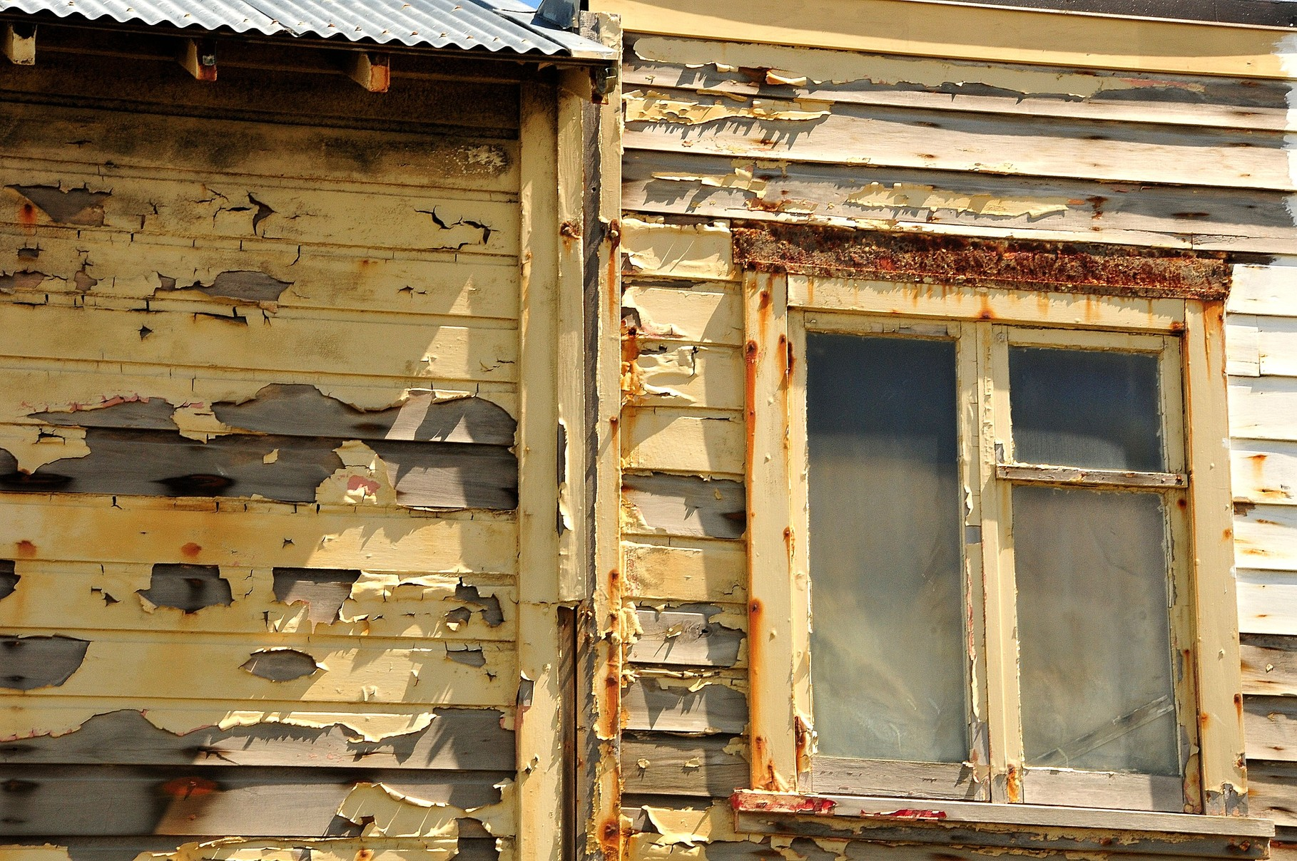 Rotten Homes
