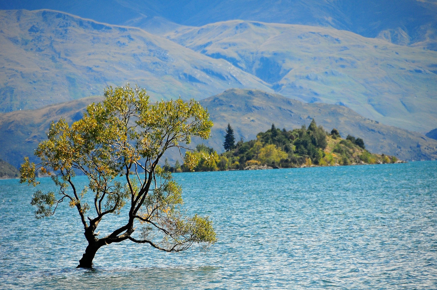 Down At Wanaka