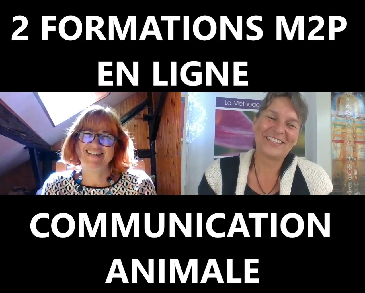 Online Ausbildungen auf Französich