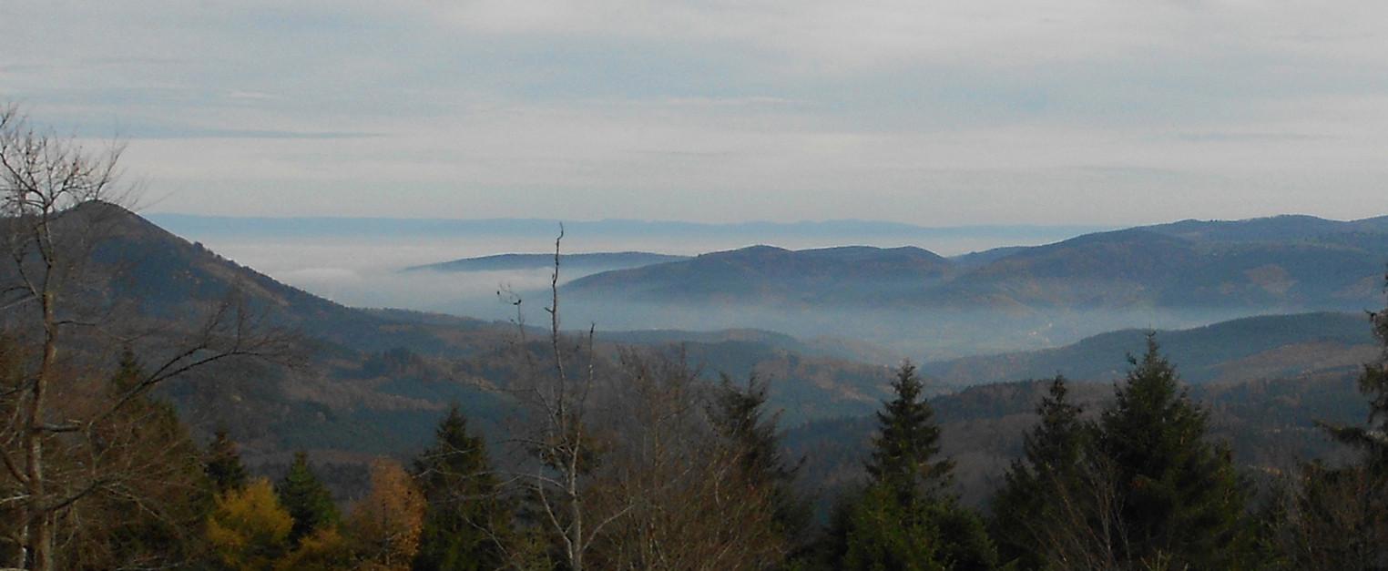 Vue sur l'Alsace depuis le Col de la Côte de l'Engin