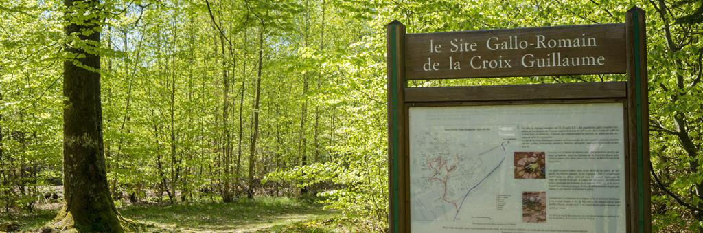 Accueil du site - GR5 entre Carrefour de la Croix Guillaume et carrefour des 4 Chemins