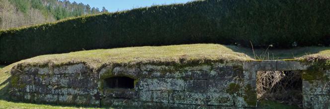 Les soupiraux, seuls vestiges des caves