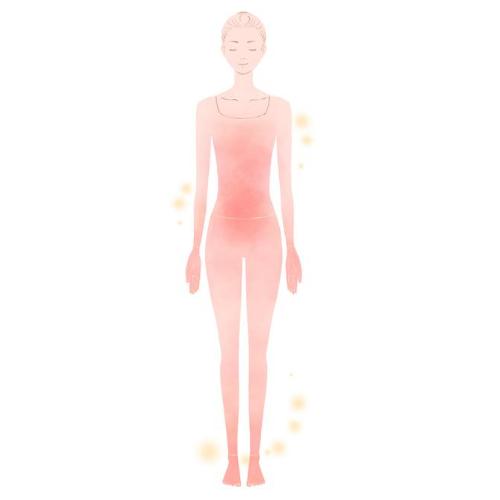 リンパ液・血液など体液循環の改善を促します。