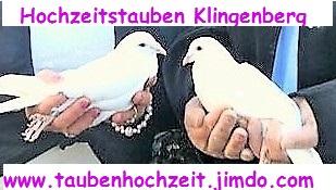 Taubenhochzeit Klingenberg