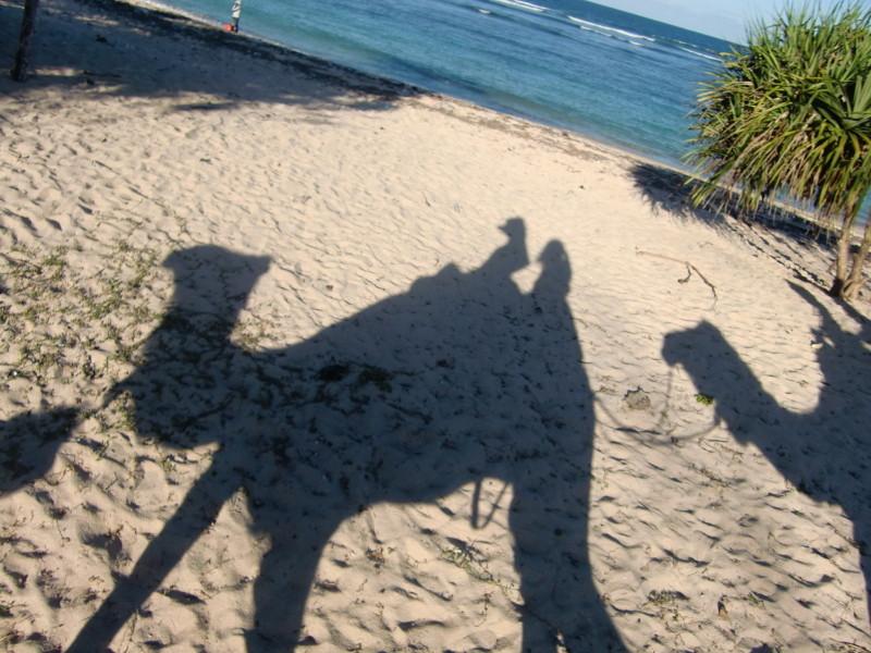 ラクダに乗って浜辺をお散歩♪