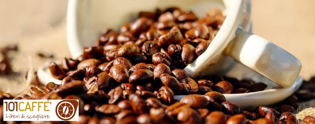 101 CAFFE' CECINA