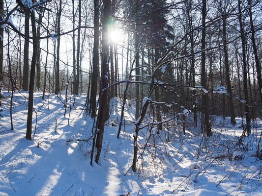 WinterSchweiz_balanceYou!©ChristinaBecker