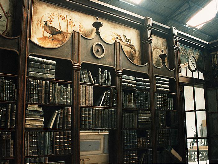 el armario de darwin / teatro
