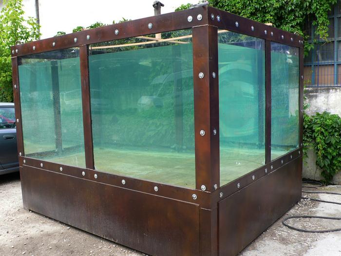 piscina con pirañas / publicidad itinerante