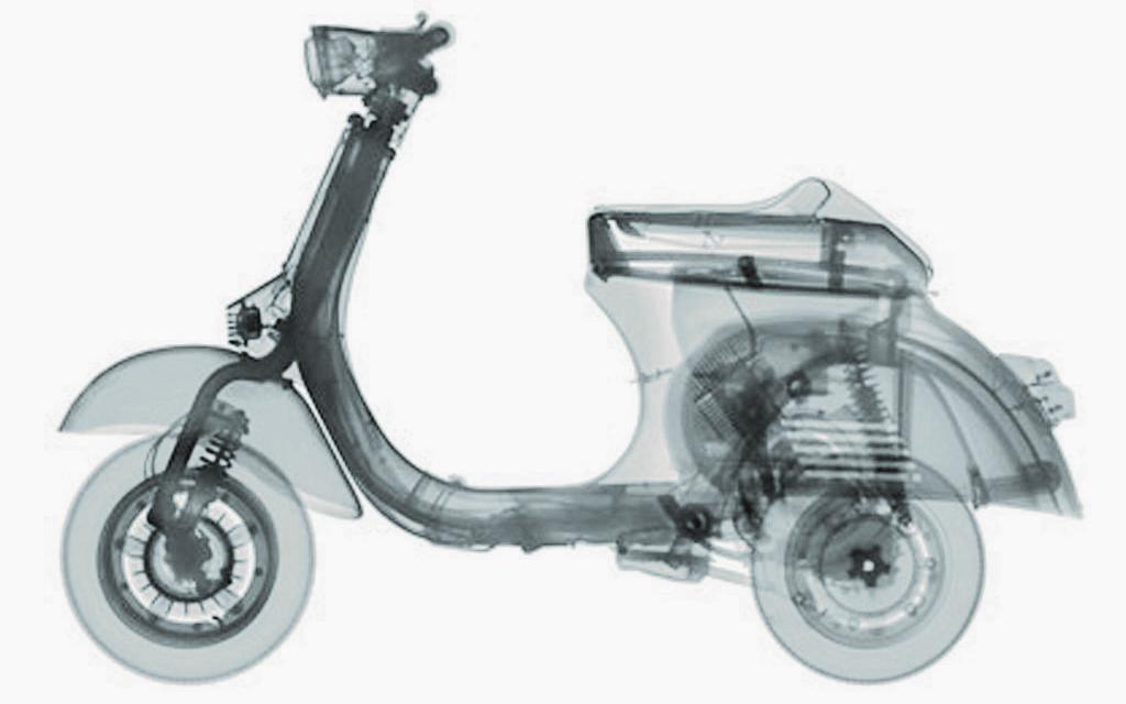 X-RAY Bild von VEASEY. Röntgenbild, Darstellung einer Vespa
