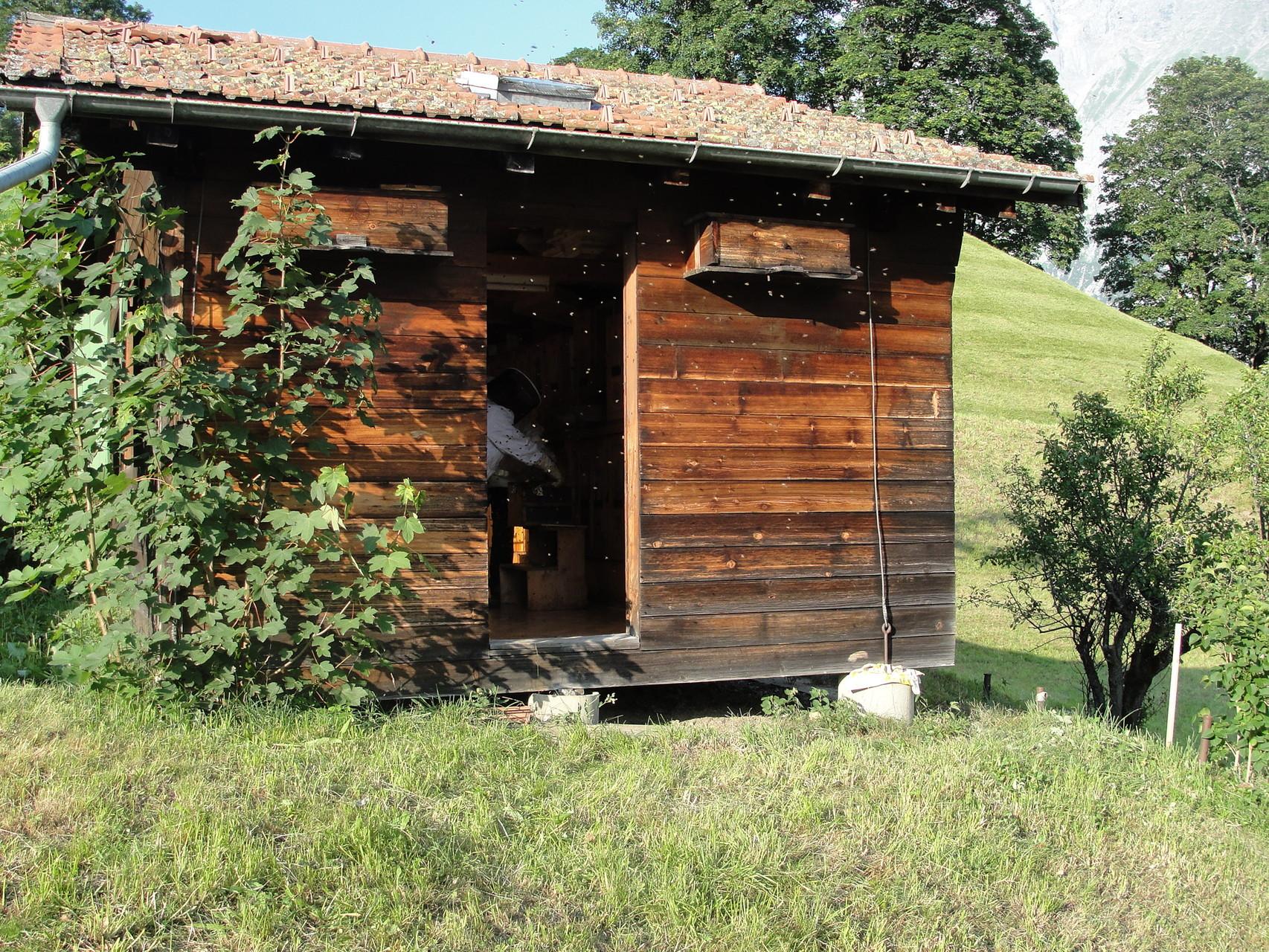 Zugang zum Bienenhaus