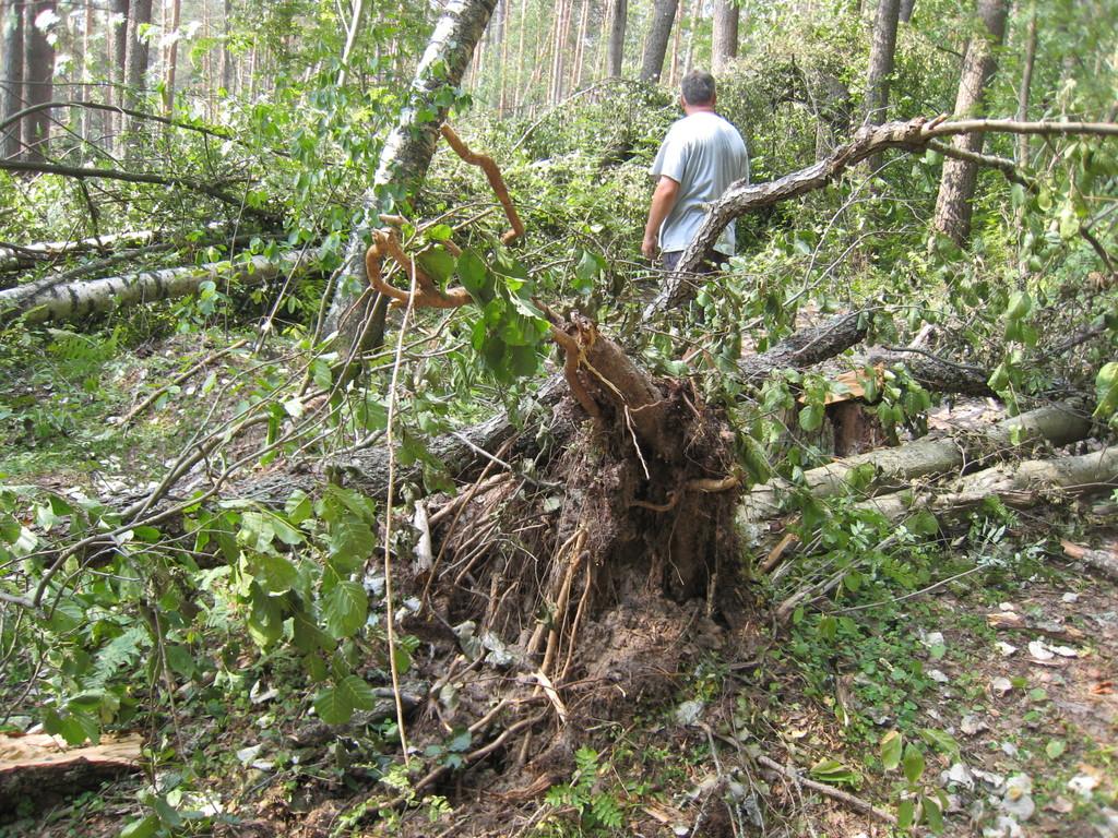 Последствия урагана около территории базы