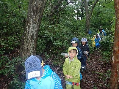 雨の中探検