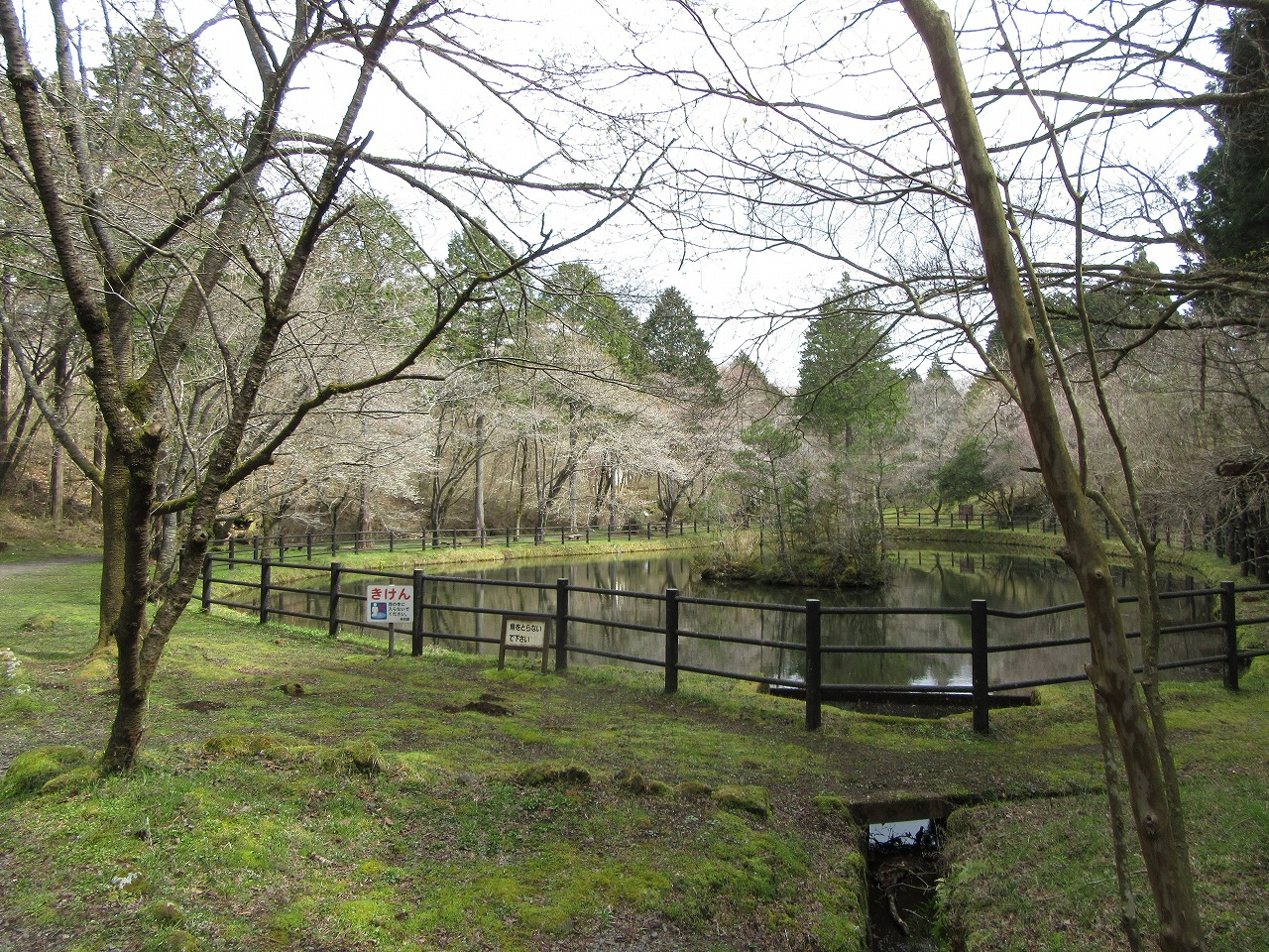 富士見ヶ池
