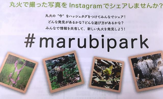#marubipark