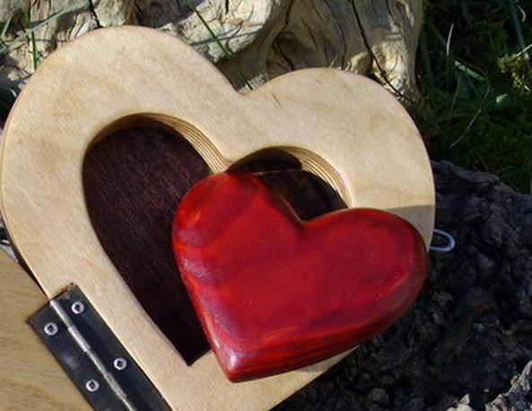 Das eingefangene Herz