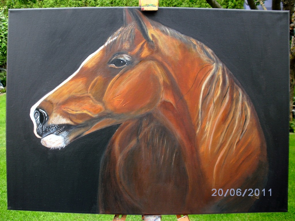 Pferd ( Acryl )