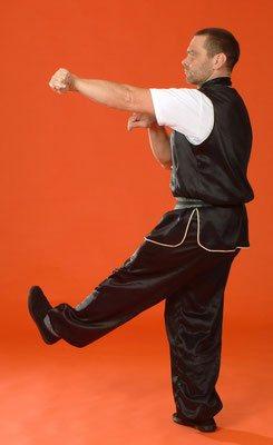 Meister Heek mit Wurftechnik des Mantis Kung Fu