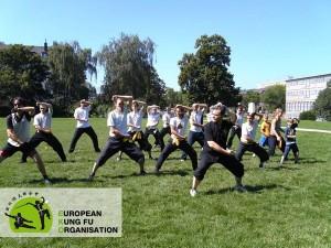 Gruppentraining der Jing Wu Kung Fu Schule im Park