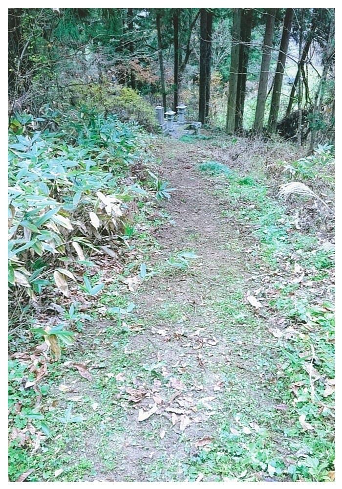 ①この道を下っていきます。
