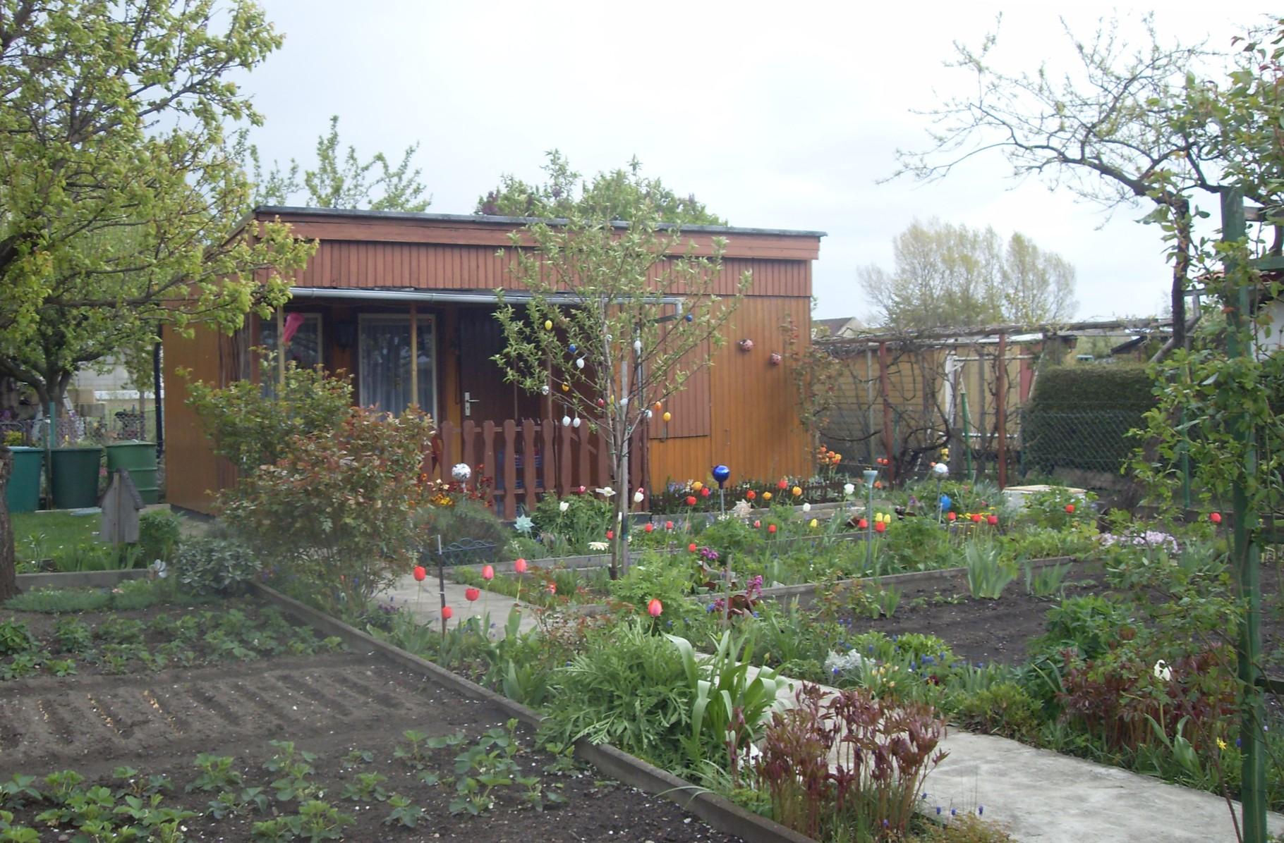 Garten 2014-9