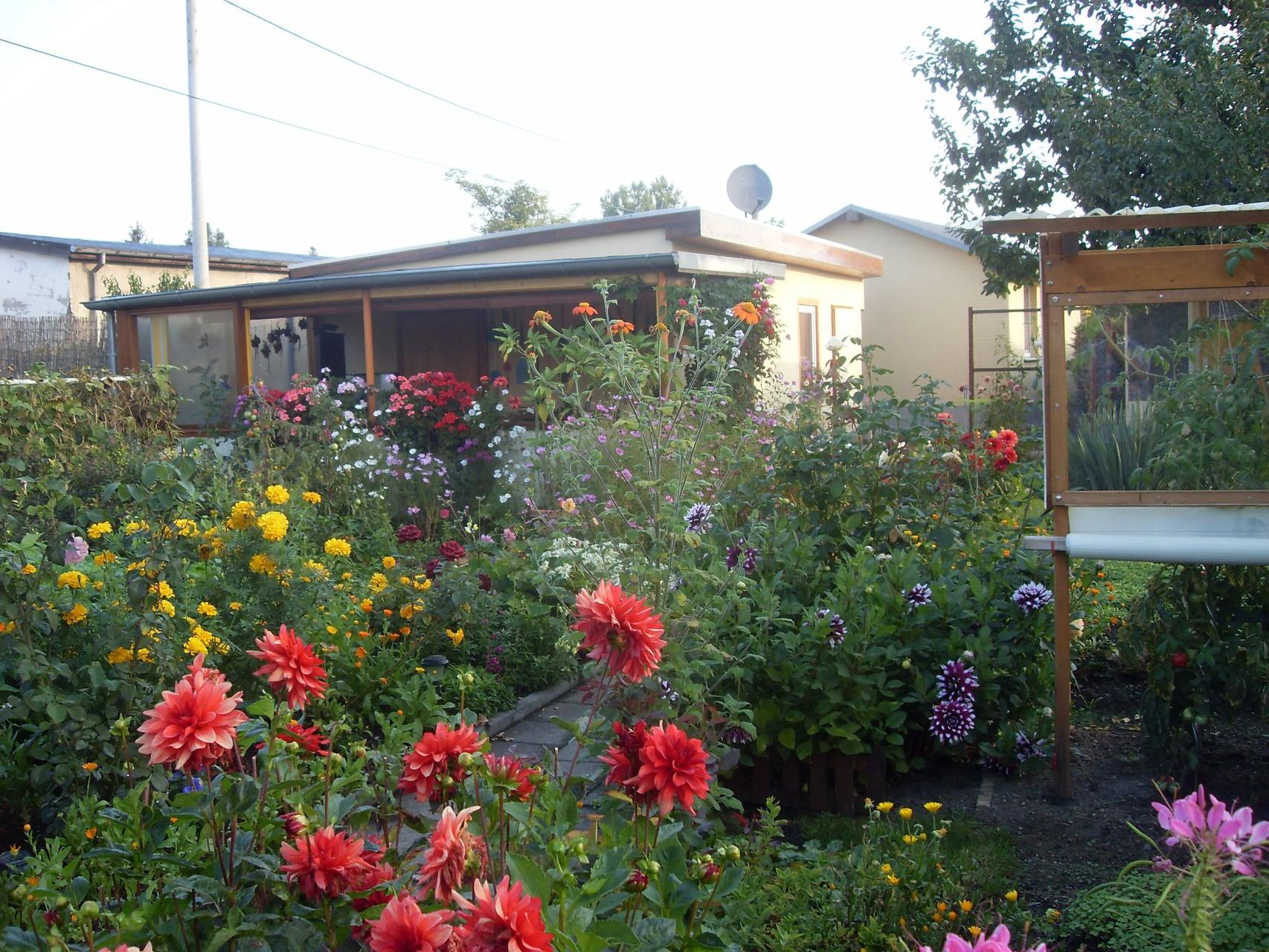 Garten 2012-1