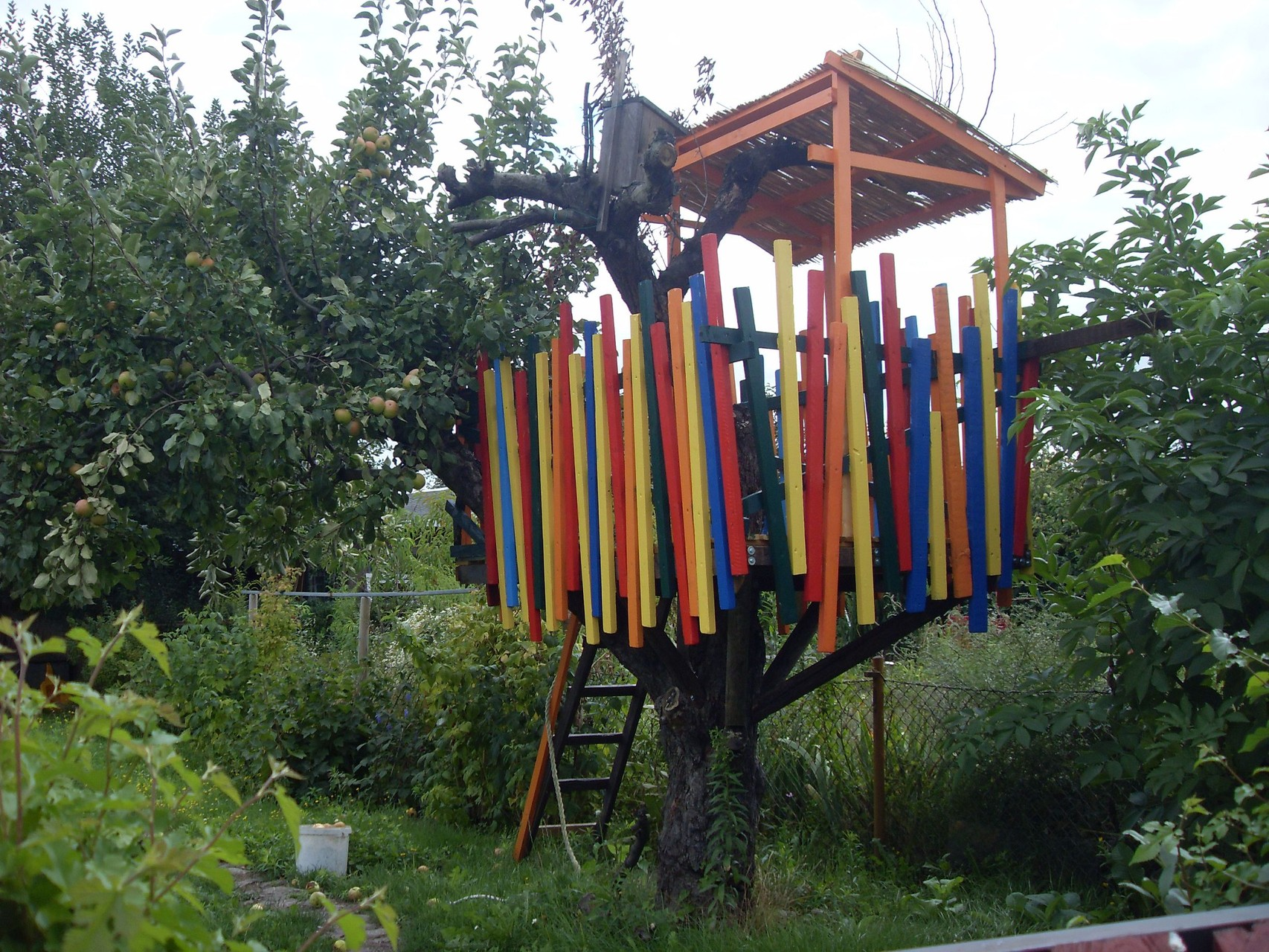 Garten 2011-1
