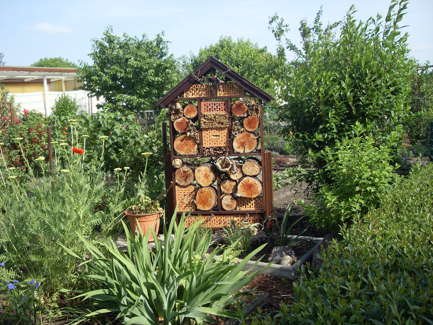 Insektenhotel 2011-1