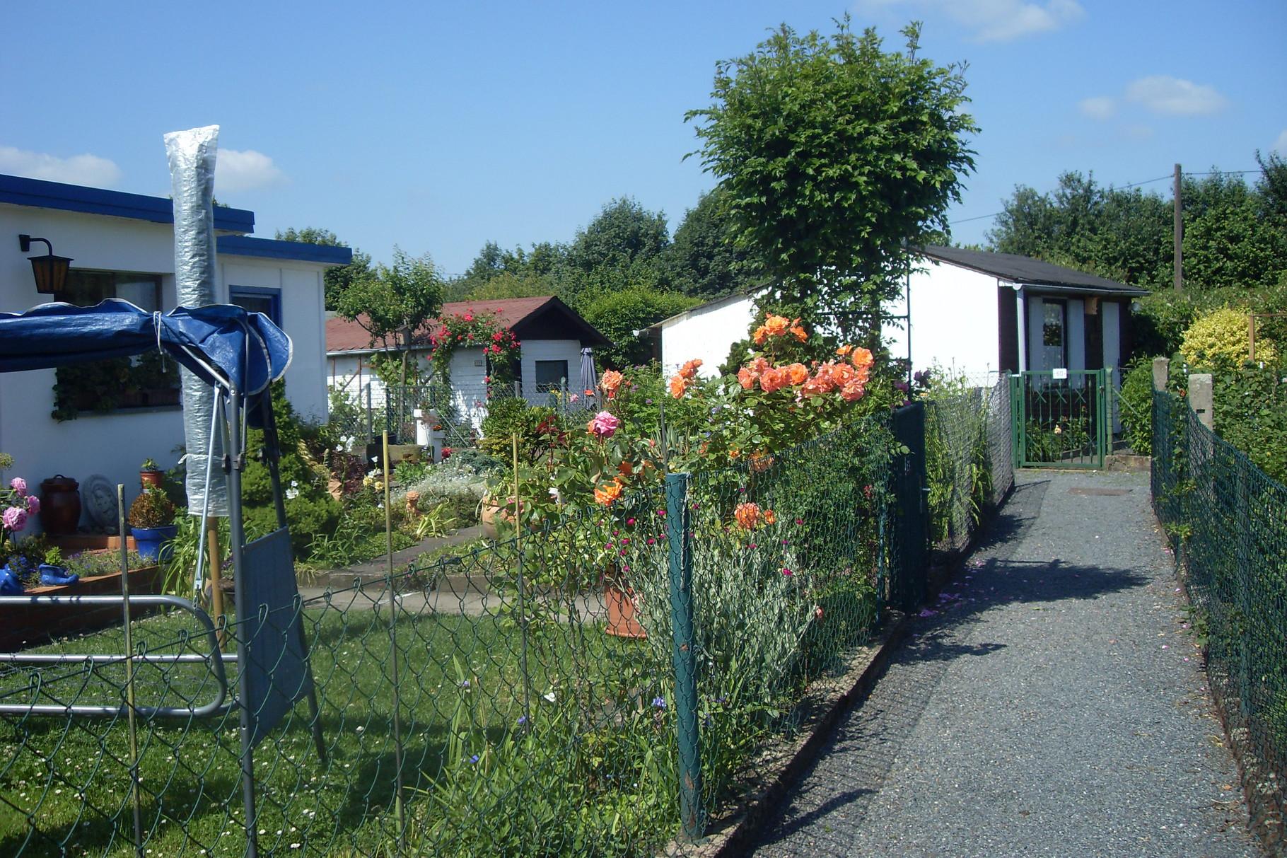 Garten 2014-3