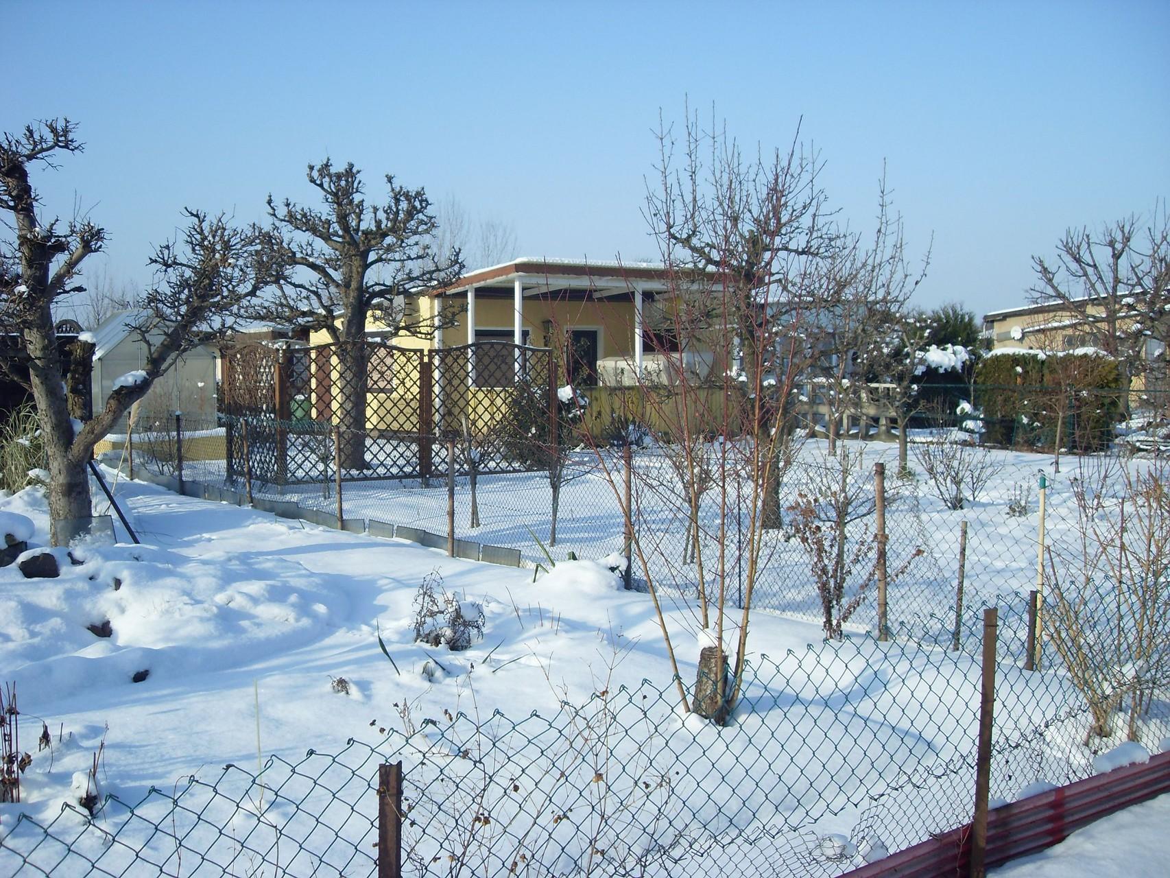 Garten 2009-1